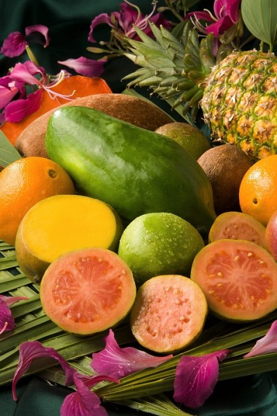 [/userfiles/files/tropical-fruit-1788576_960_720.jpg]